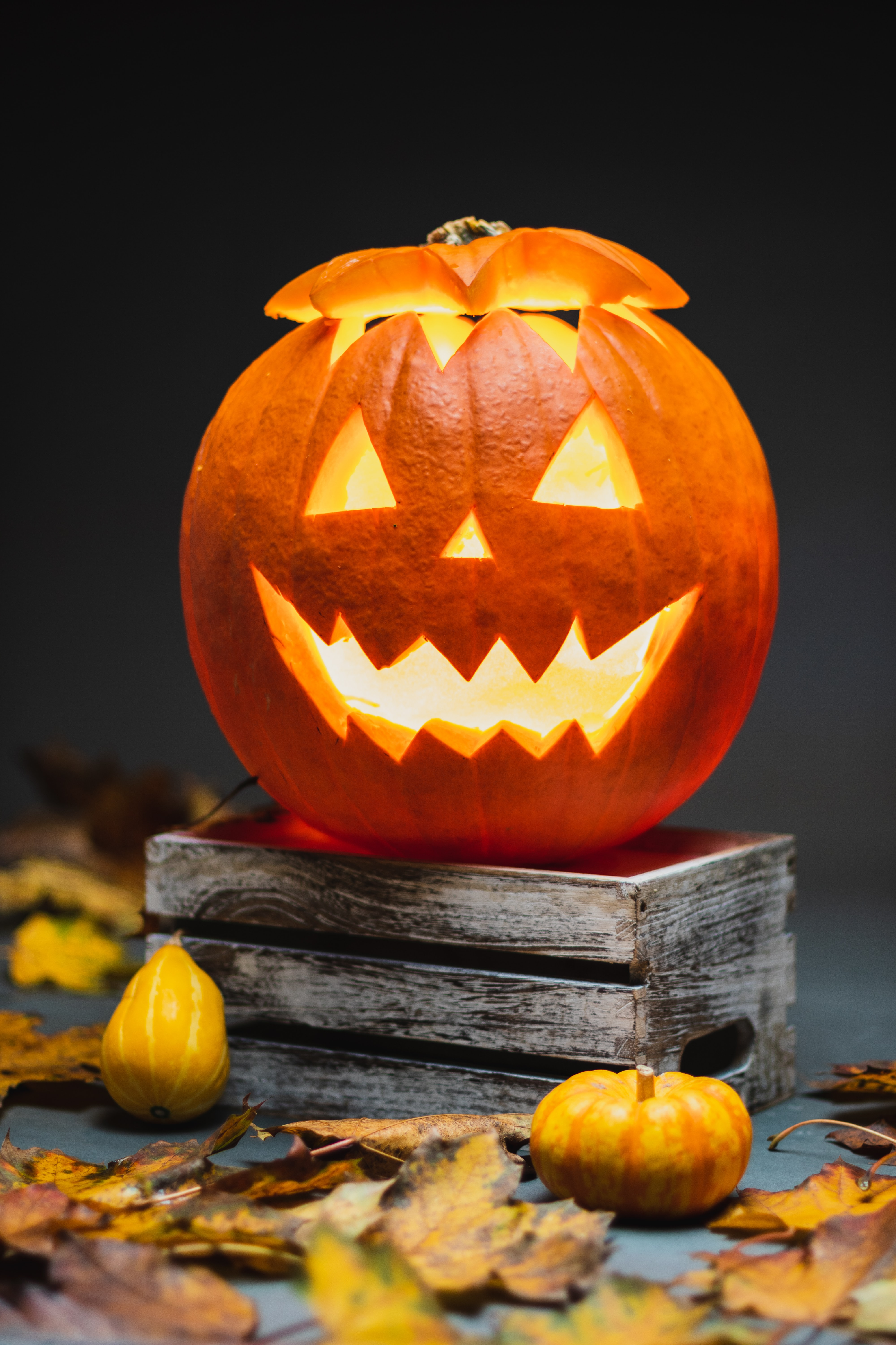 Quiz Can You Pick the Halloween-Themed Word or Phrase That Matches Each Definition?