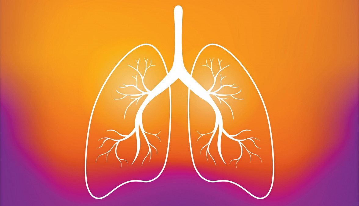 Screening Rates for Lung Cancer Lower Than Previously Shown