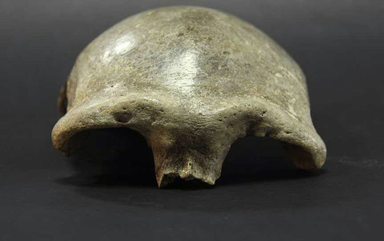 The Denisovans Expand Their Range into China