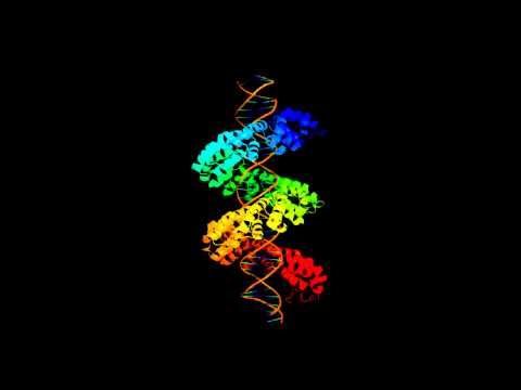 Copy-editing the Genome: Extreme Personalized Medicine?