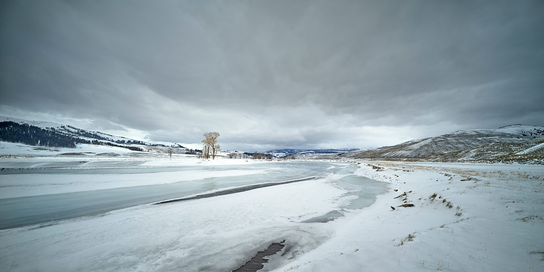 Lamar Valley, Yellowstone NP, USA by Bruce Costa