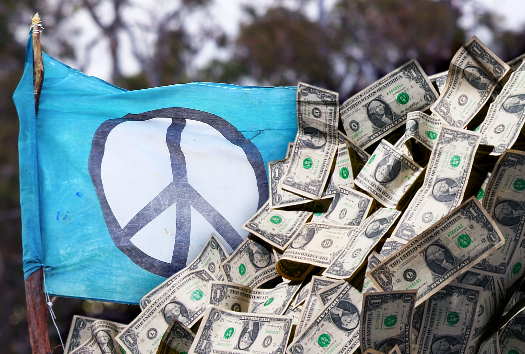 Peace-washing: Is a network of major donors neutralizing activism in the peace movement?