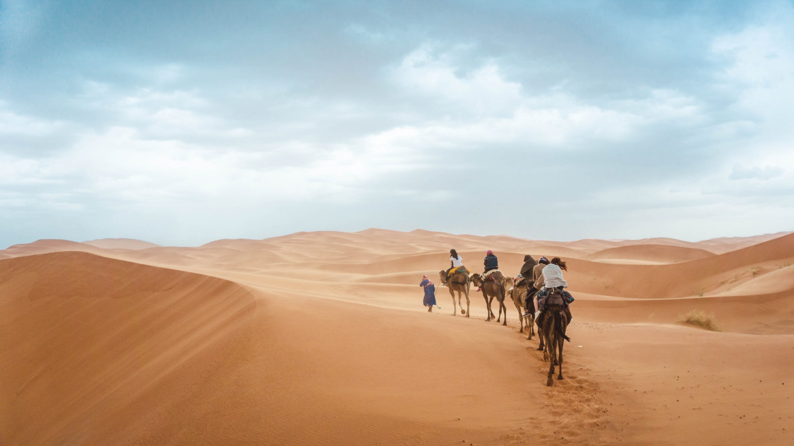 Sahara Trivia | 40 facts about the African desert
