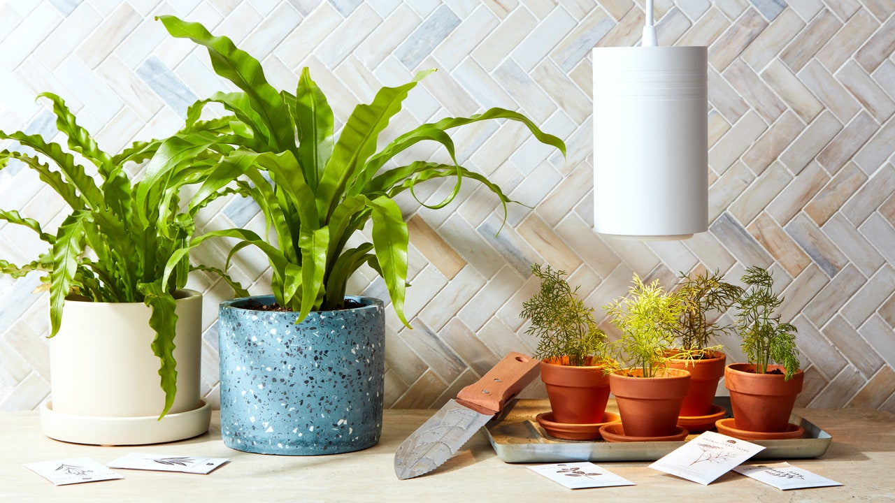 13 Gifts for Plant Lovers 2021 for Weddings, Registries, and Beyond