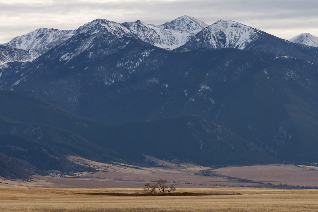 Tobacco Root Mountains, Montana, USA by Carolyn Brown