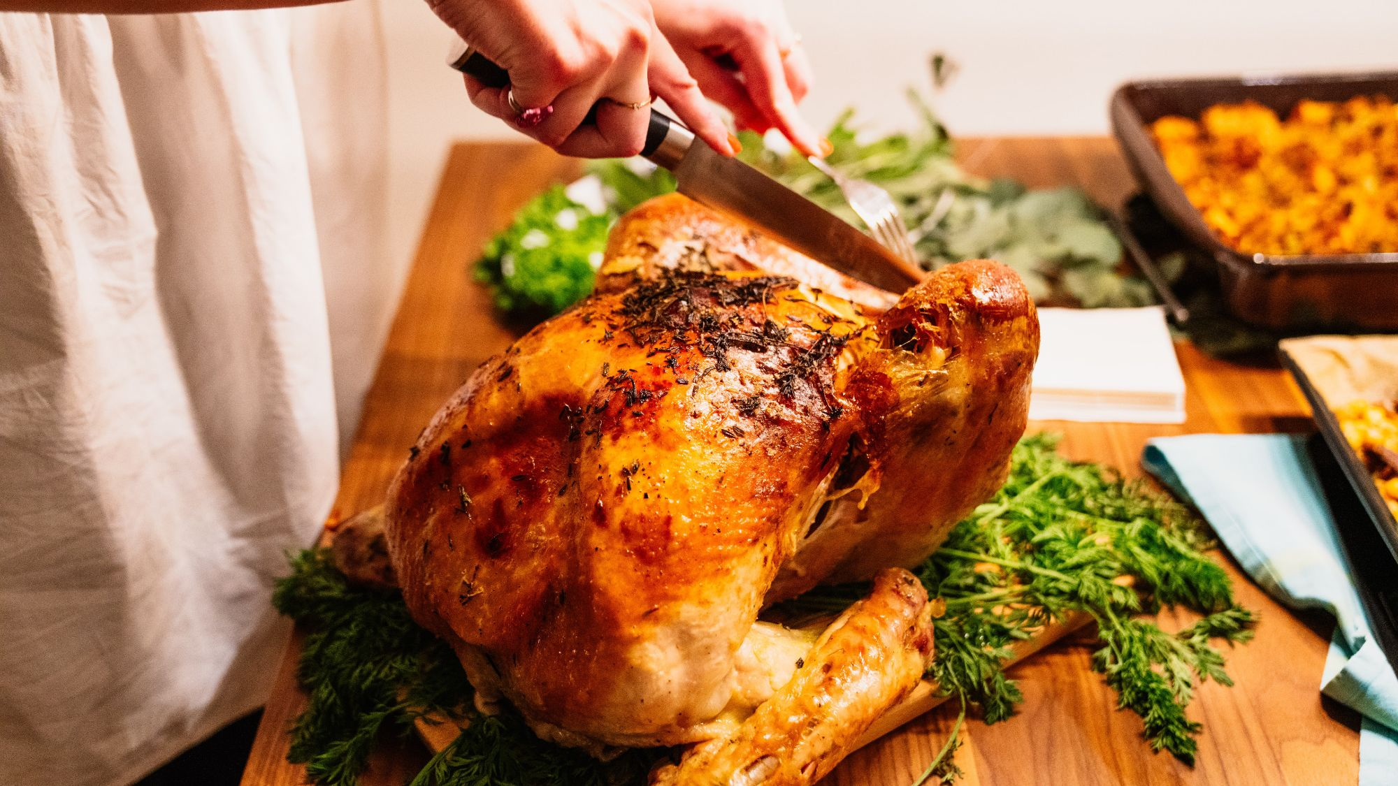 Expert Tips for Carving a Turkey