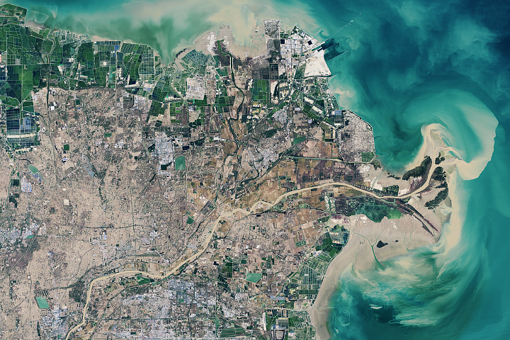 Building Up the Yellow River Delta
