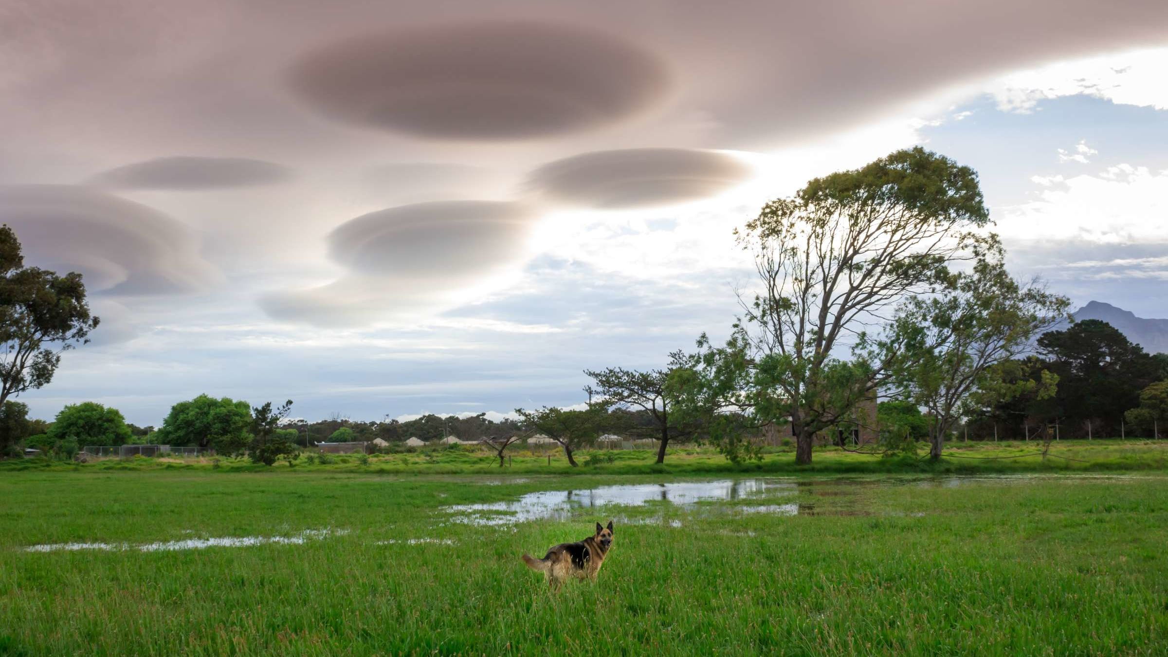 8 Strange Cloud Types and What They Mean