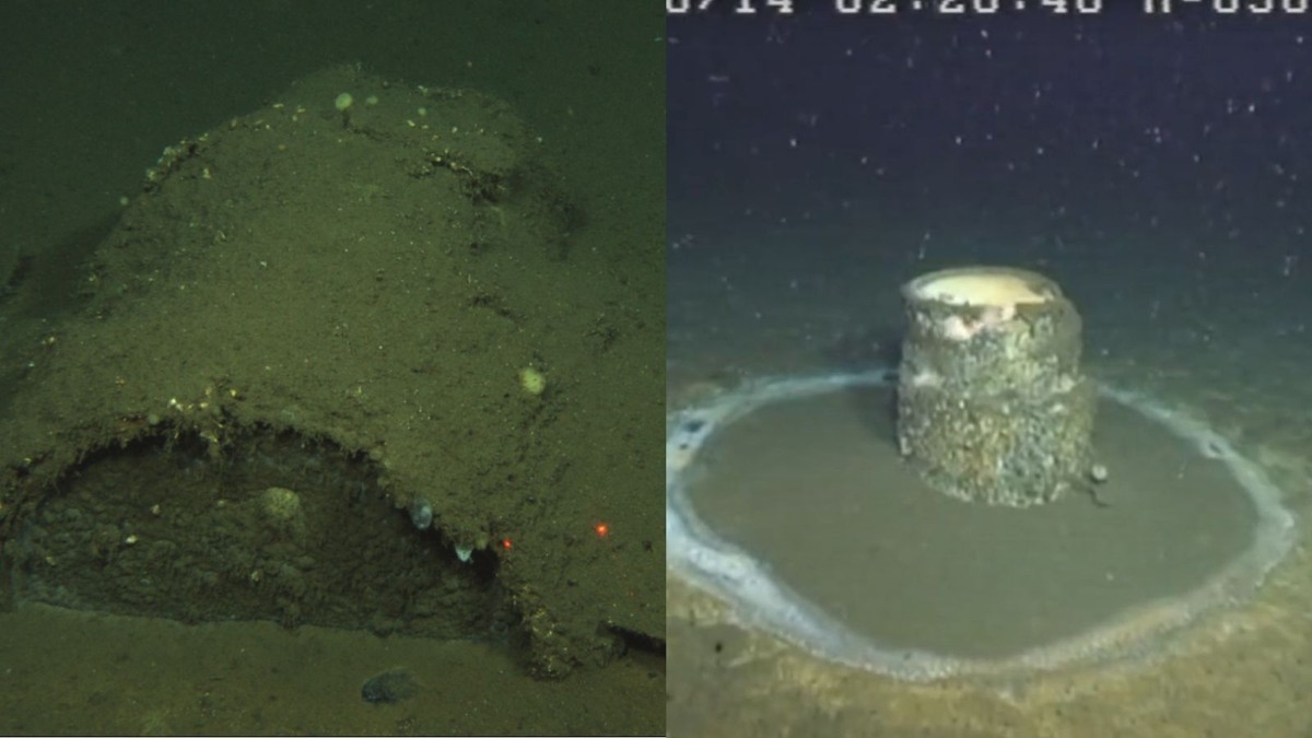 How Scientists Discovered a Massive Toxic Dump Site Off the LA Coast