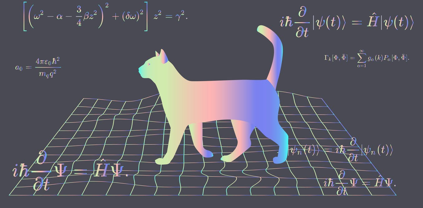 Could Schrödinger's cat exist in real life? Our research may soon provide the answer
