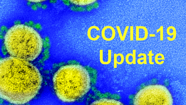 Bringing Needed Structure to COVID-19 Drug Development