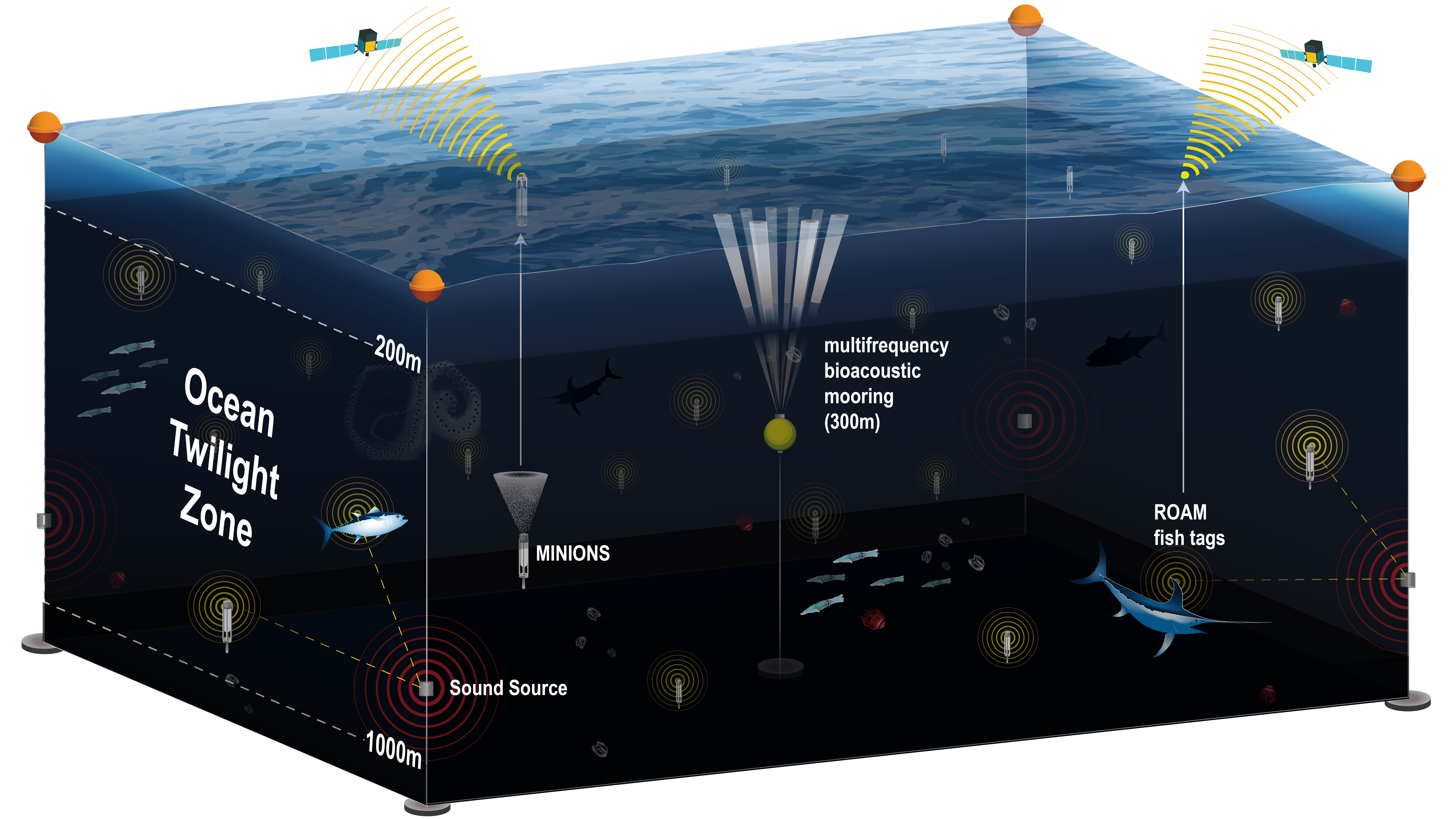 New observation network will provide unprecedented, long-term view of life in the ocean twilight zone