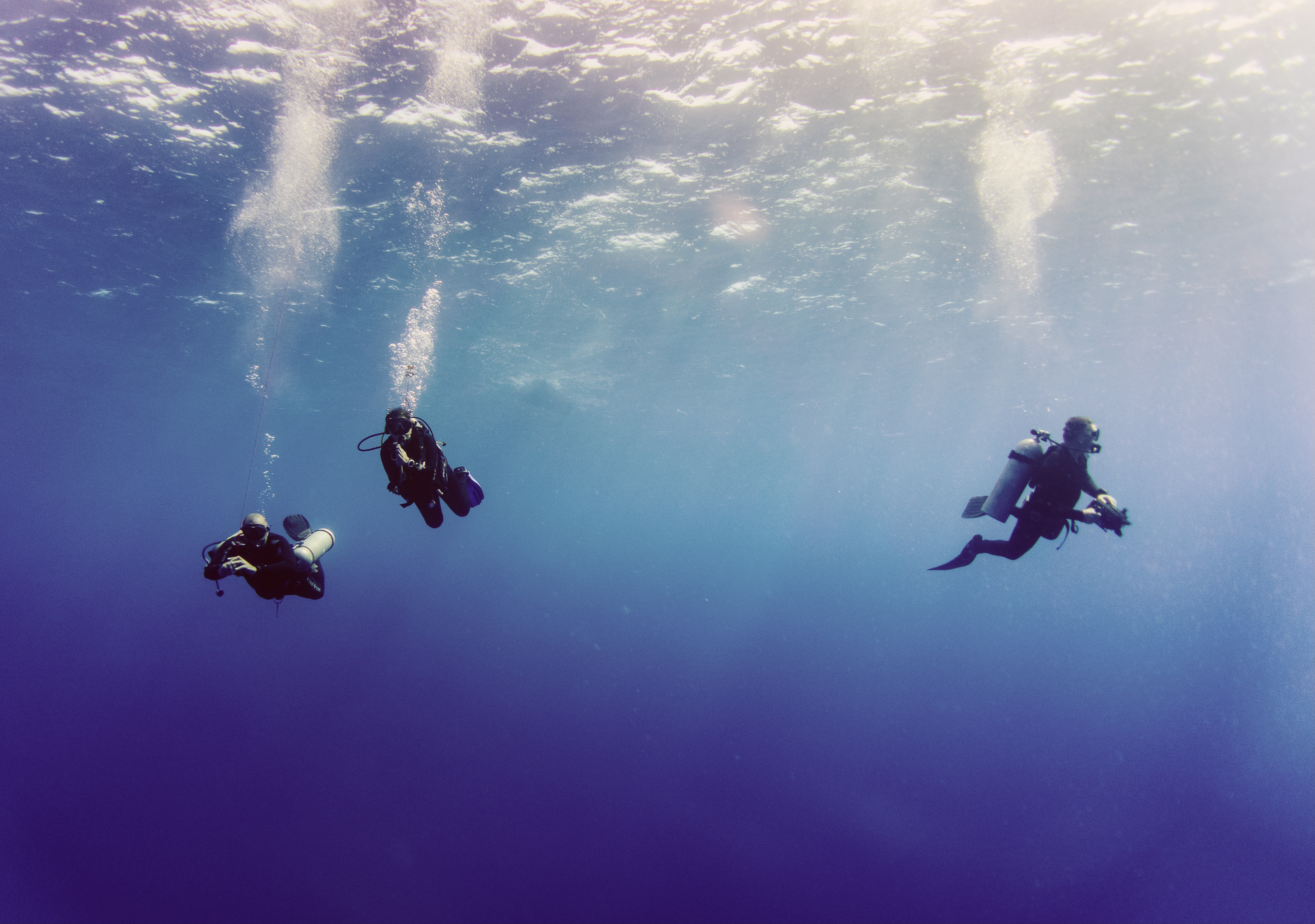 The Best Scuba Diving in The World & Live-a-Boards for Each Dive Site