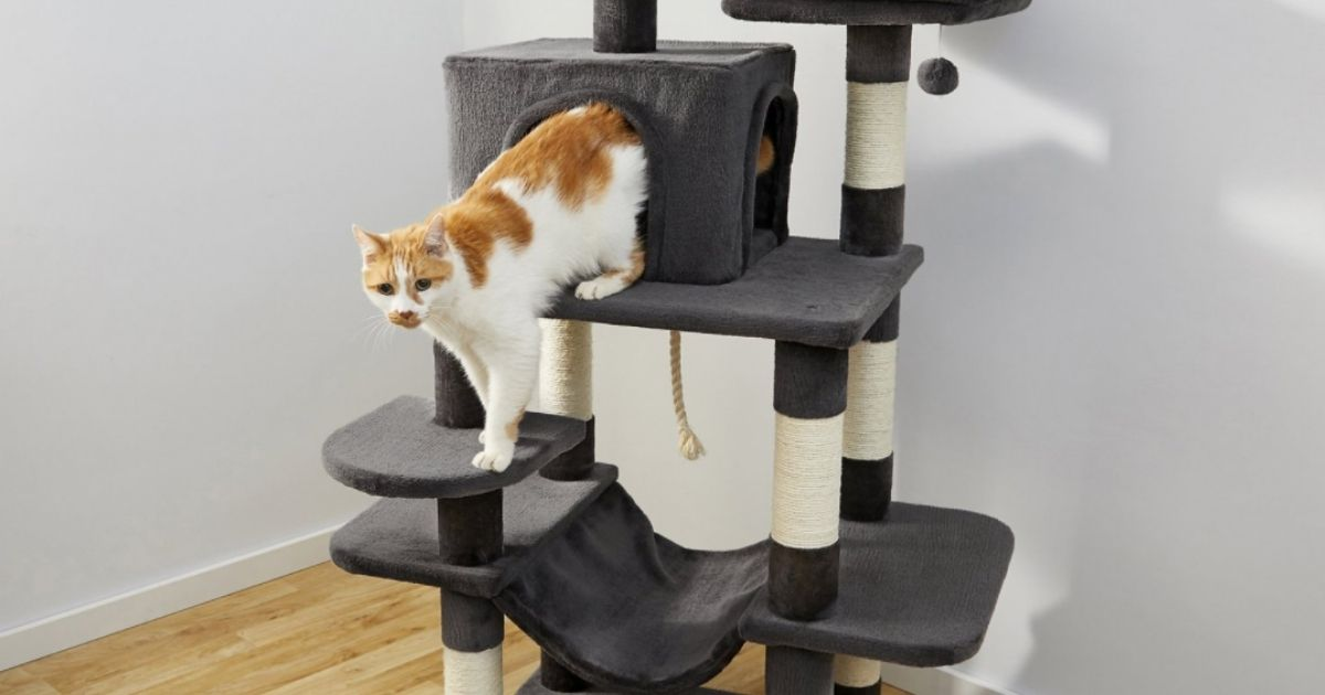 """59\"""" Cat Tower & Condo Only $45 Shipped on Chewy.com (Regularly $76)"""