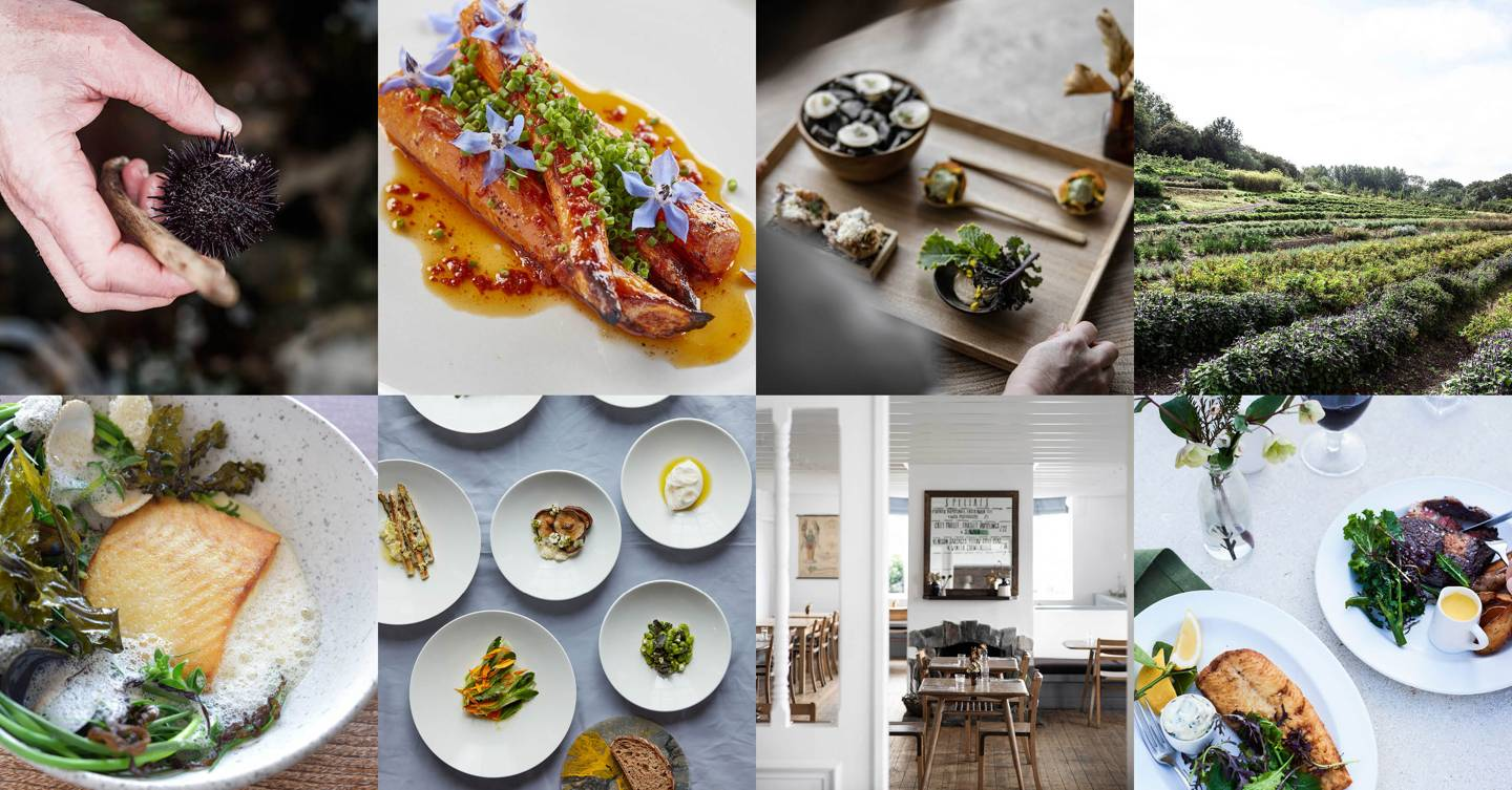 Michelin reveals UK and Ireland's top sustainable restaurants in Green Star 2021 list