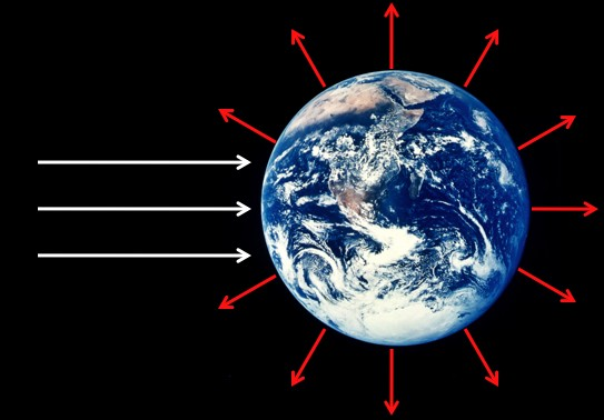 Q: Why doesn't life and evolution violate the second law of thermodynamics? Don't living things reverse entropy?