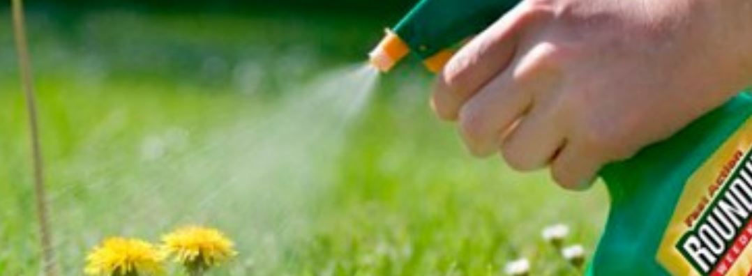 Glyphosate Lawsuits: From $2 Billion To $25 Million On Their Way To $0