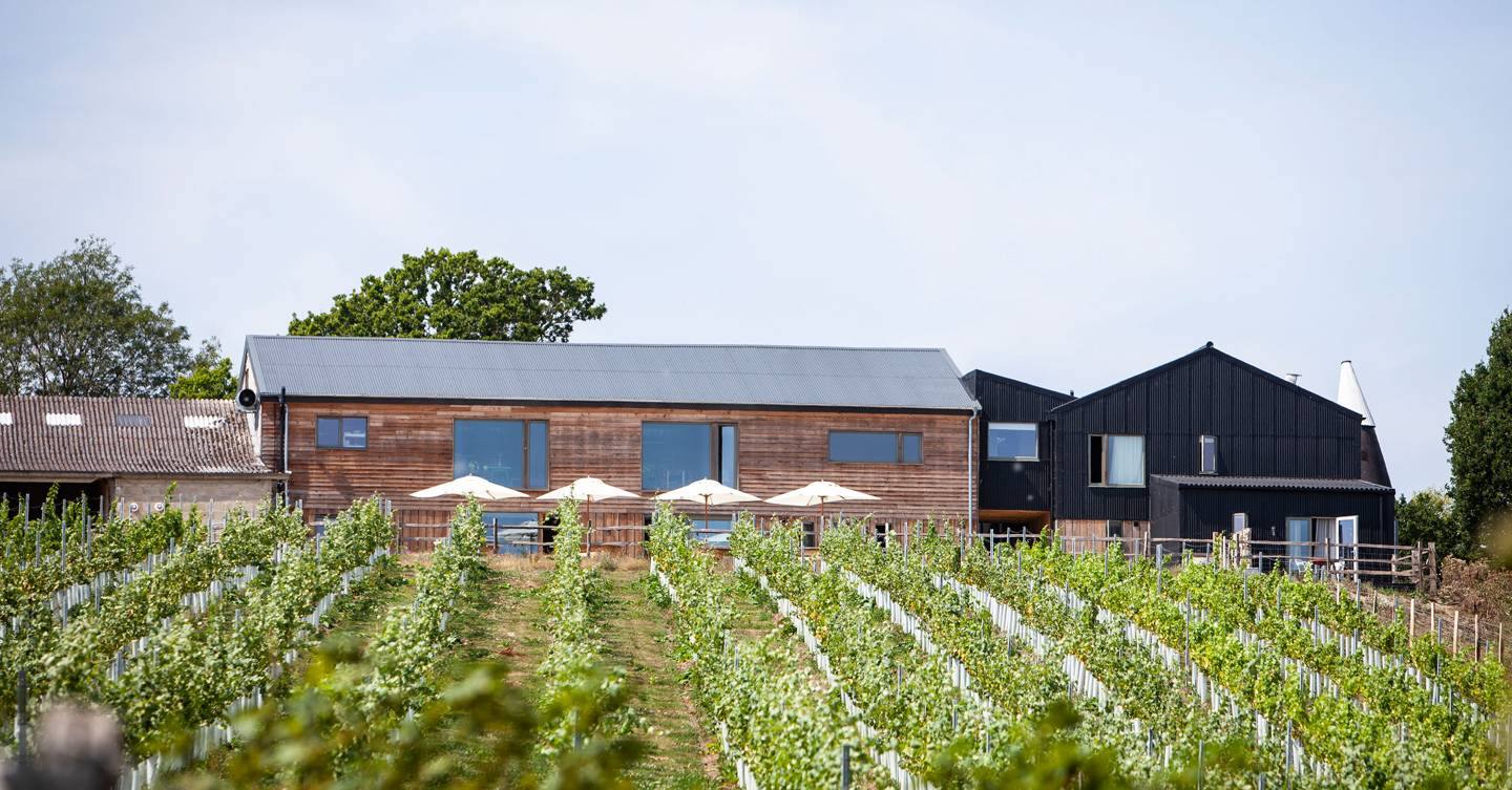 The best vineyards in England and Wales