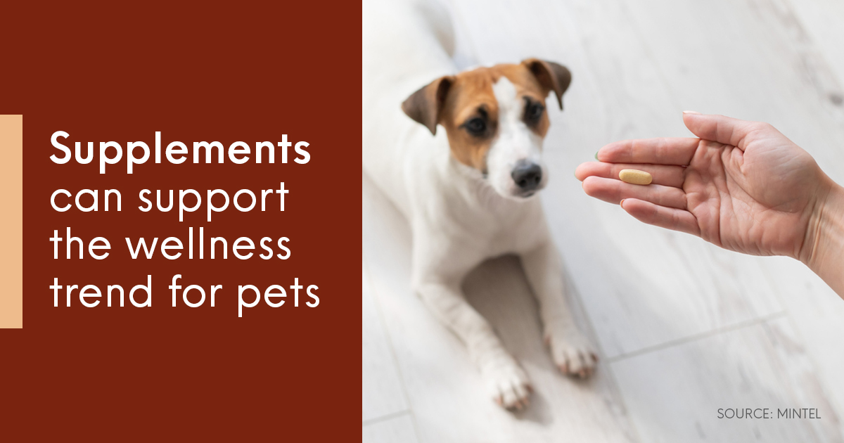 Supplements can support the wellness trend for pets