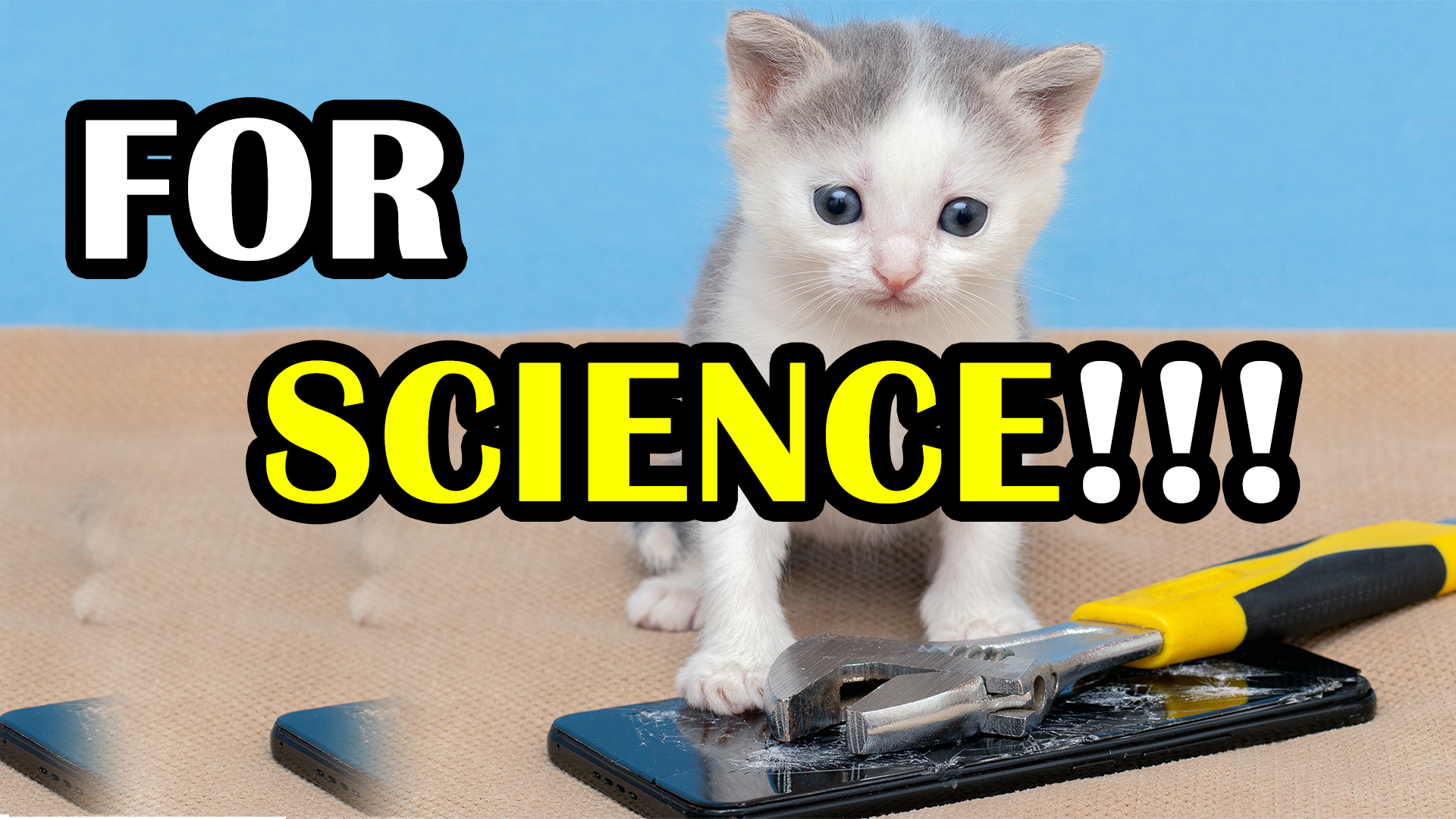 The Curious Case of the Cat that was Turned Into a Living Telephone FOR SCIENCE!!!