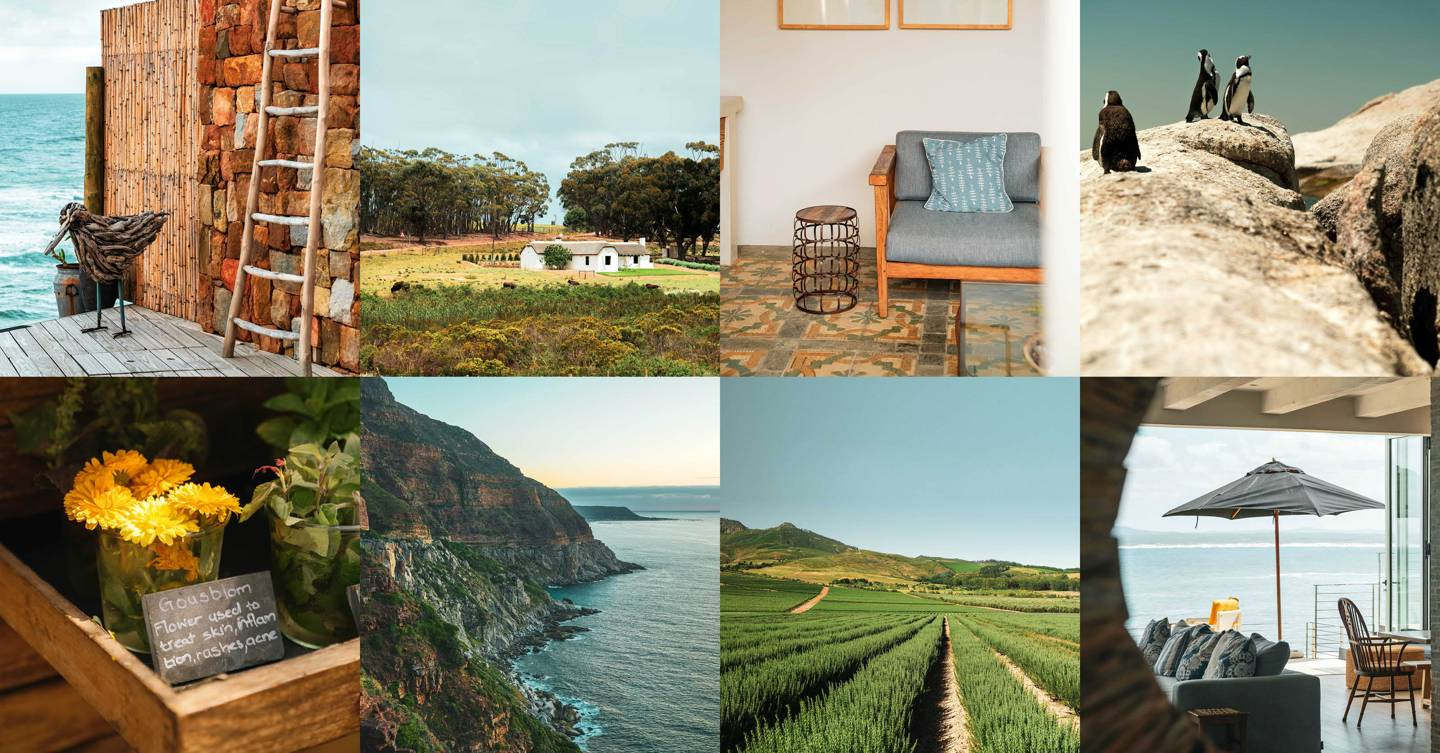 A road trip along South Africa's rocky shores