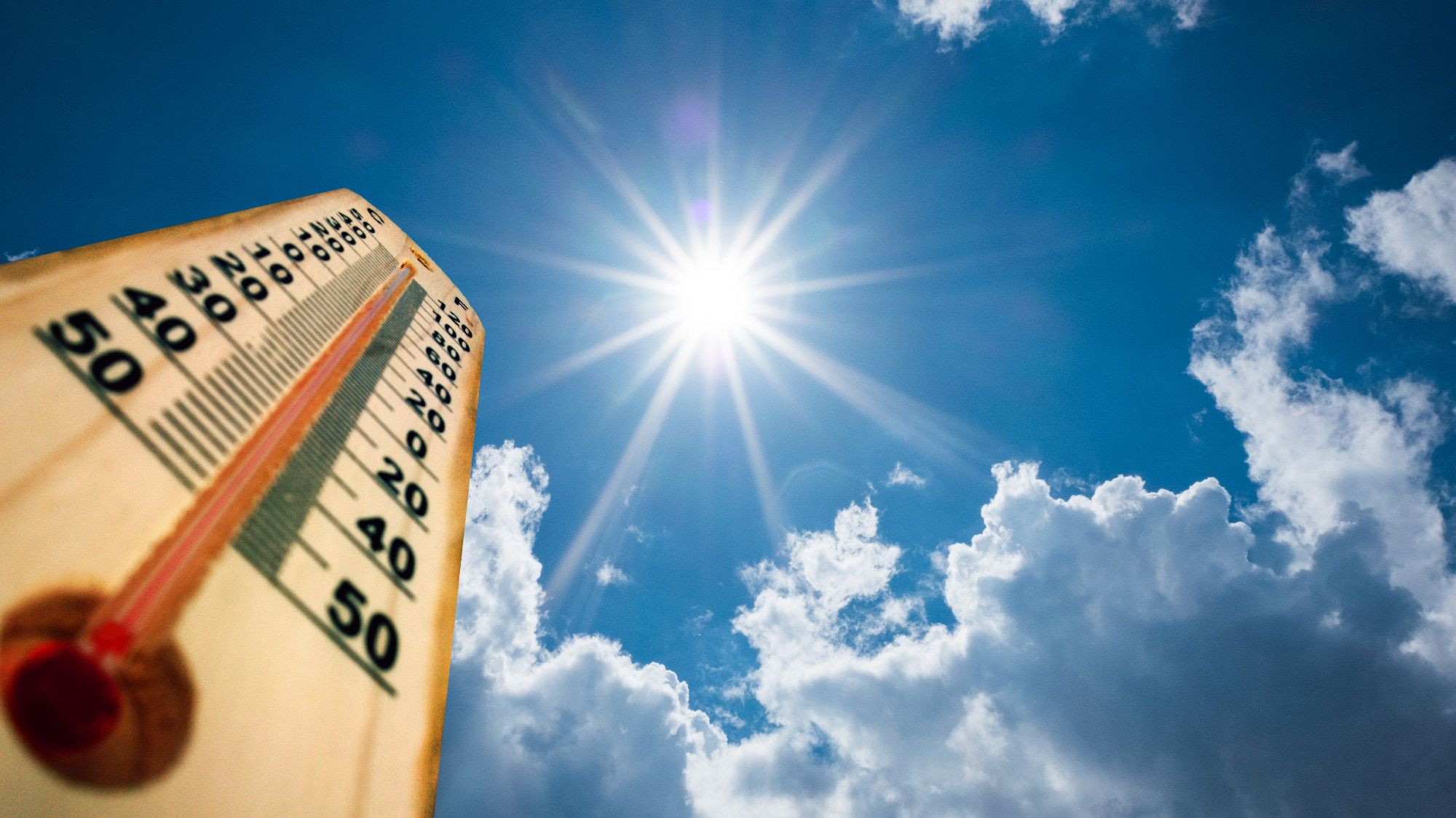 10 Tips for Coping With a Heat Wave