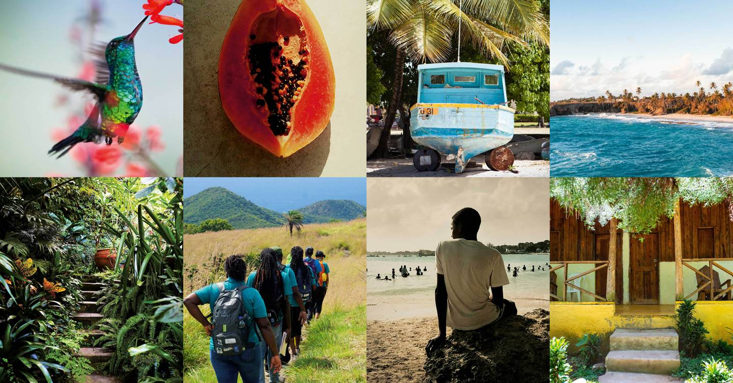 Sustainable travel in the Caribbean: How to holiday consciously