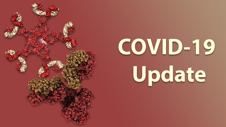 Study Finds Nearly Everyone Who Recovers From COVID-19 Makes Coronavirus Antibodies
