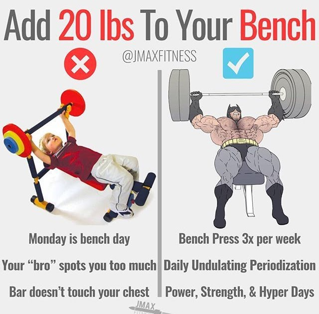 Is Bench Press Good For Building Muscle