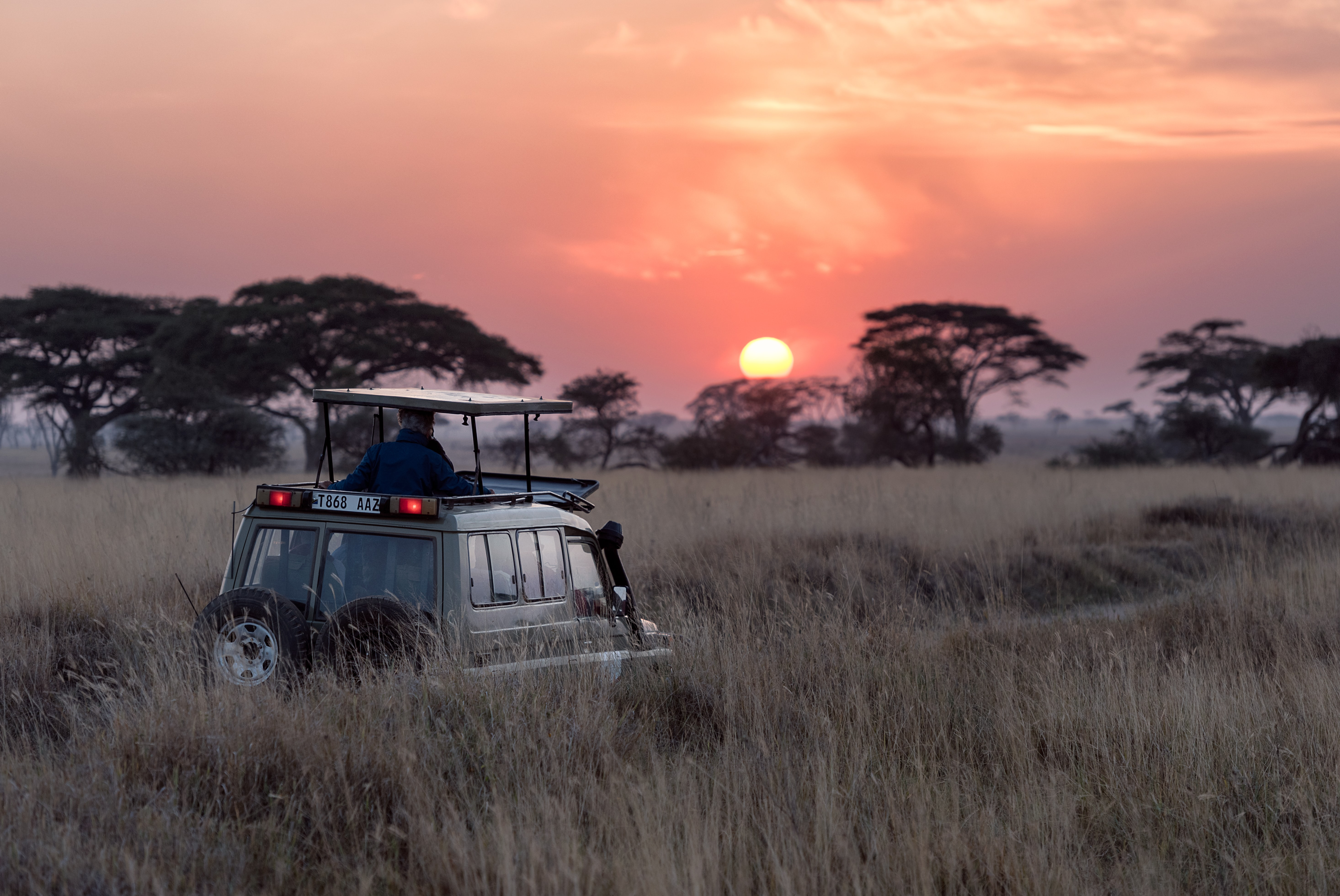 Why you should be seeking out black-owned safari camps