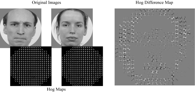 The image features of emotional faces that predict the initial eye movement to a face