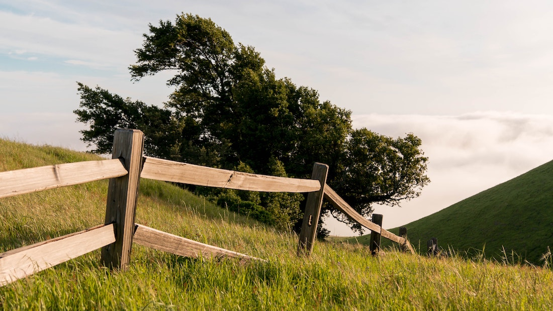 What Does a Fence Do to Wild Spaces? Well, It's Complicated