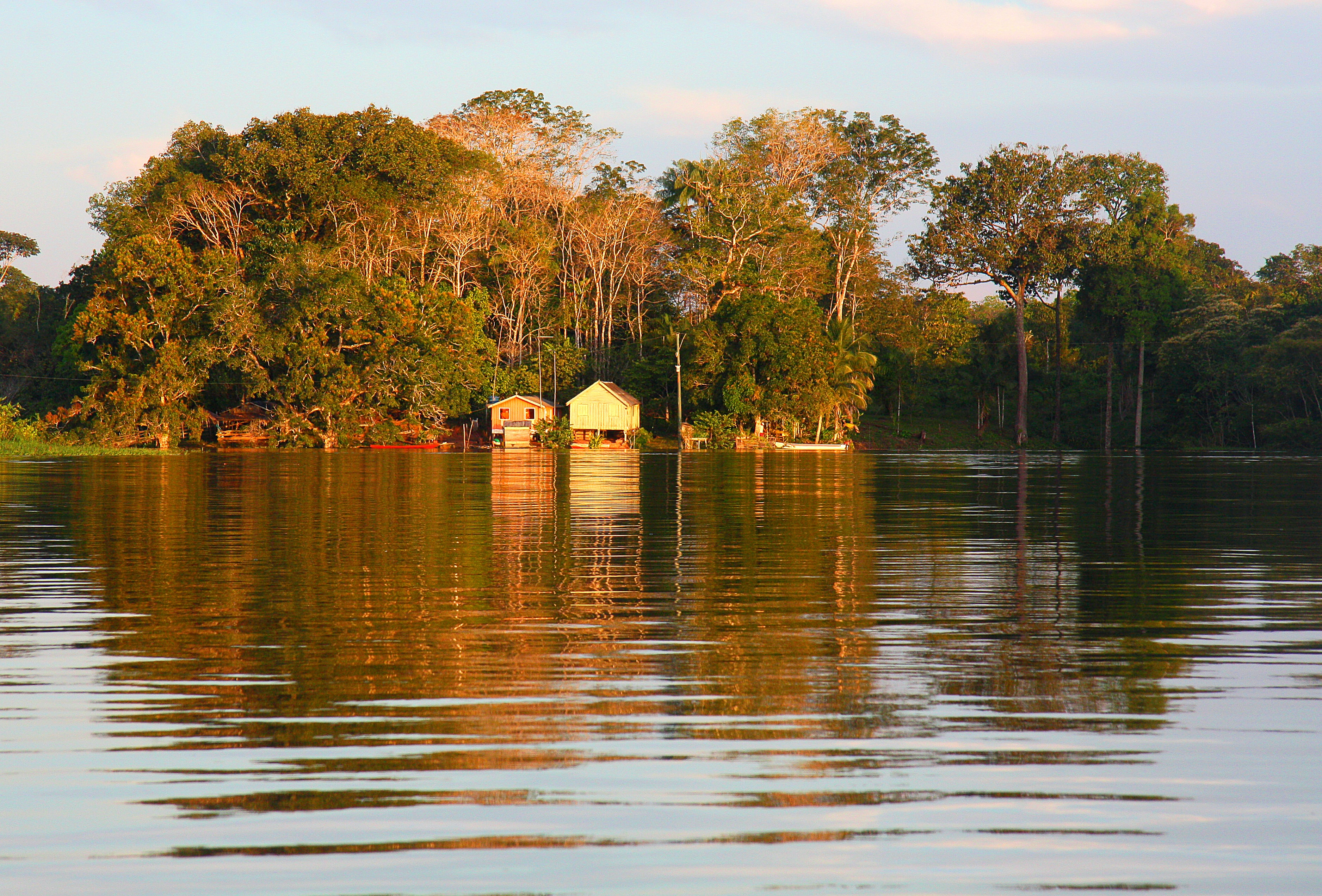 A Fervent Call to Protect 'America's Amazon'