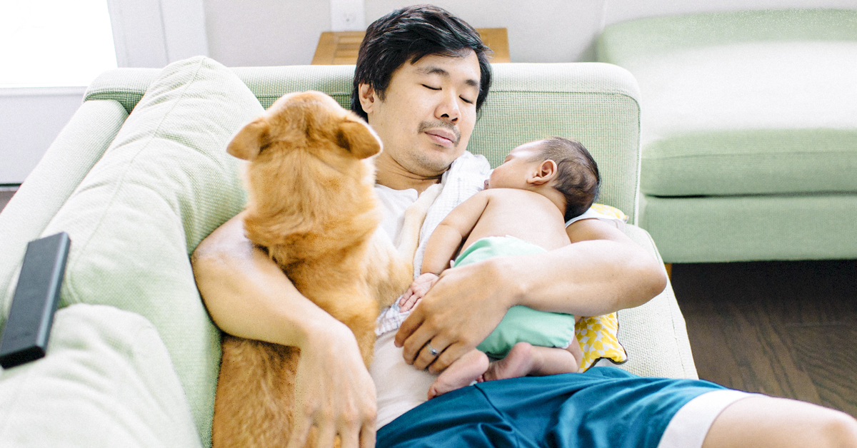 Before You Bring Home Baby, Here's How to Prep Your Pets