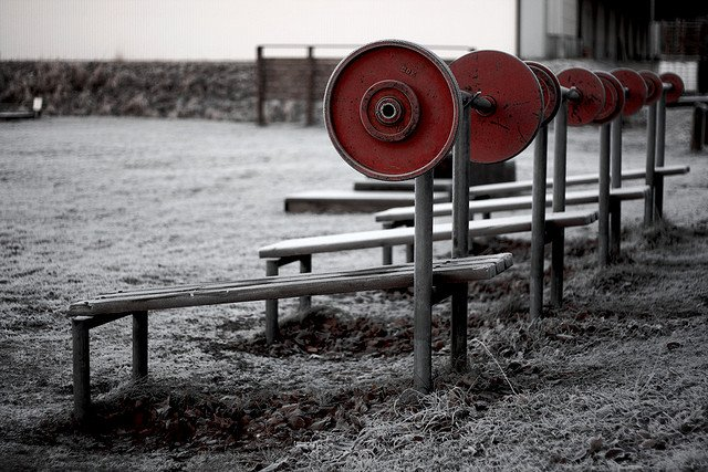 Strength Training 101: Finding the Right Gym