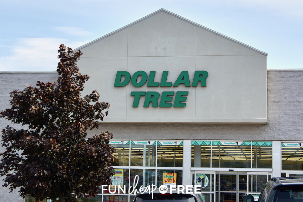 What to Buy (and Avoid) at the Dollar Store!