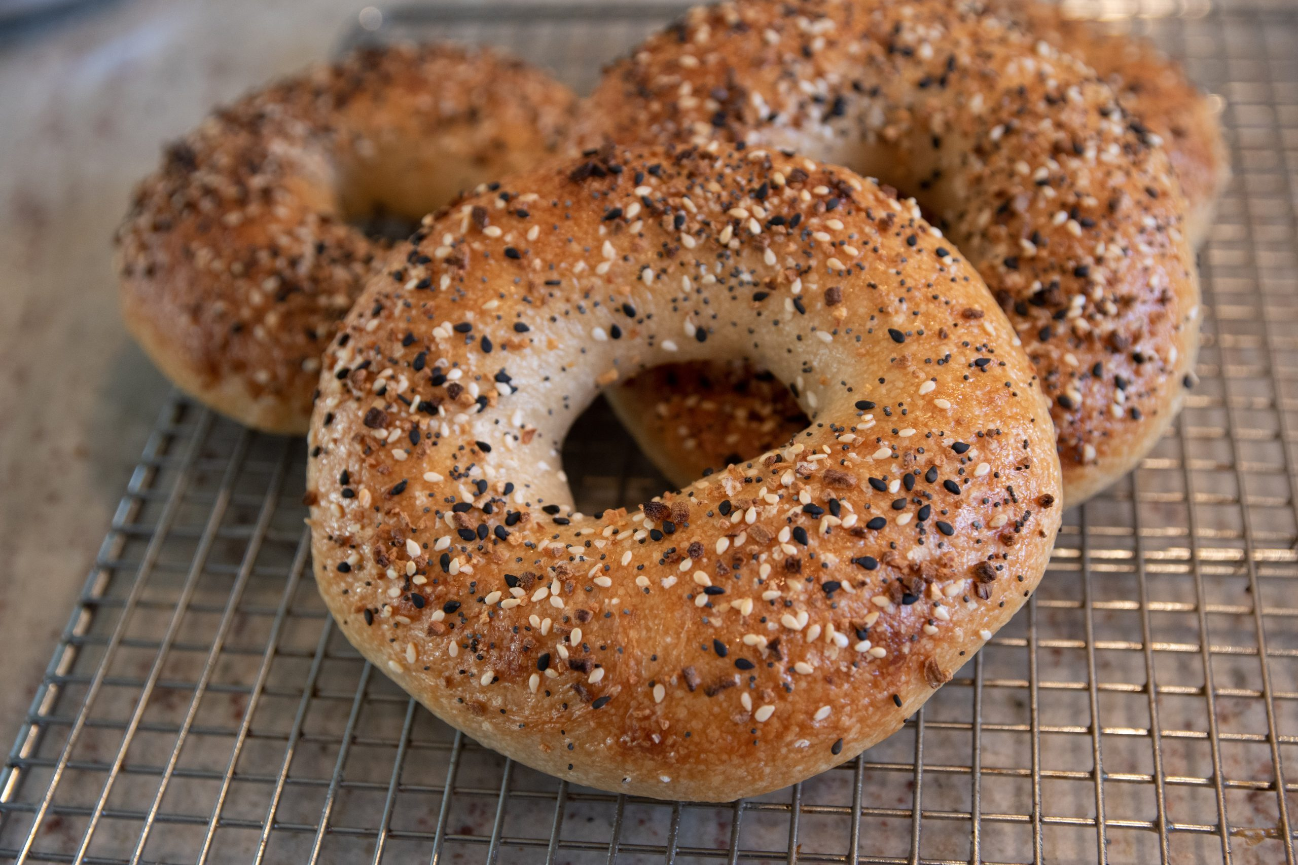 Bagel Trivia | 40 facts about the traditional bread product