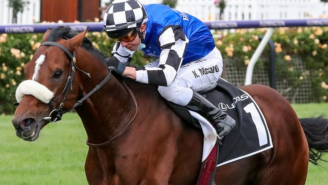 Melbourne Cup 2020: Final field, odds and best form for the race the stops a nation