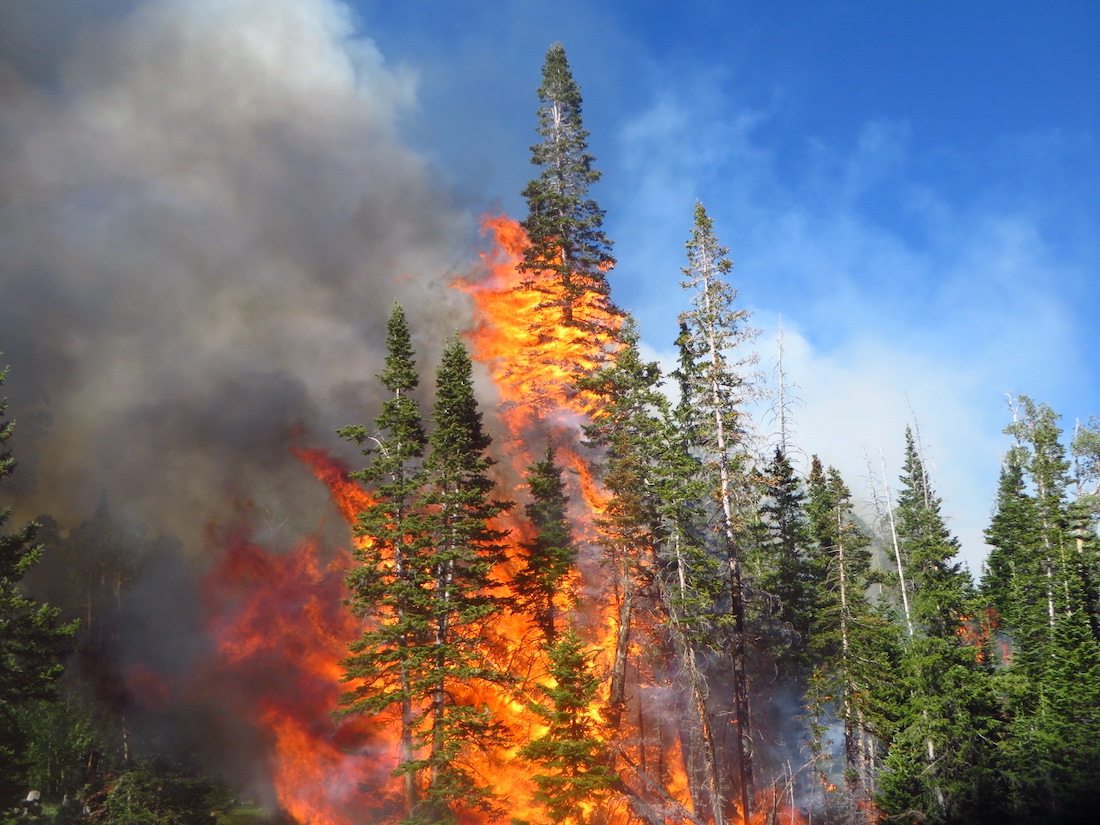The Writing Is On the Wall for the 2021 Wildfire Season