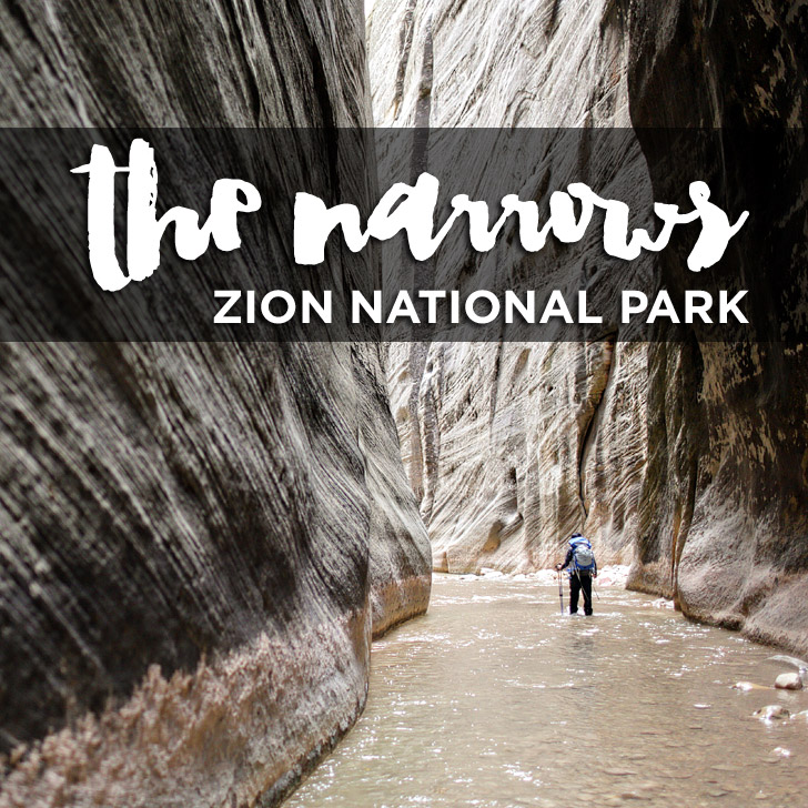 Your Ultimate Guide to Hiking the Narrows Zion National Park (Top Down)