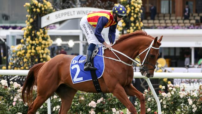 Chris Waller keen for start fresh with Nature Strip in new year as he looks to overcome ailment