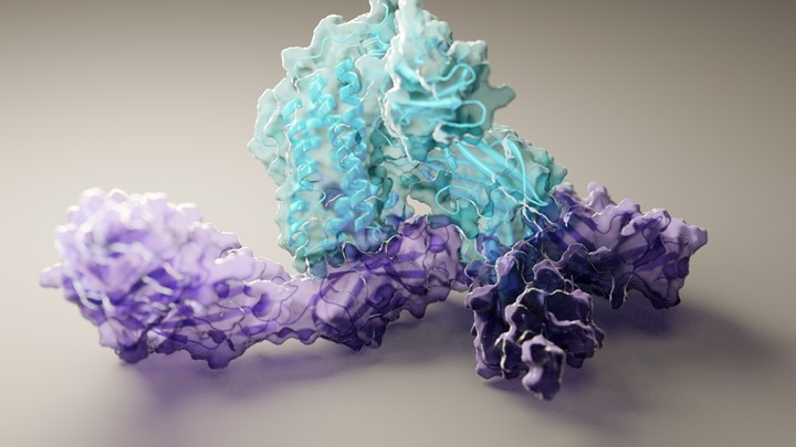 Artificial Intelligence Accurately Predicts Protein Folding