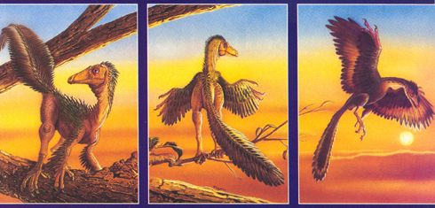 The 'Birds Come First' hypothesis of dinosaur evolution