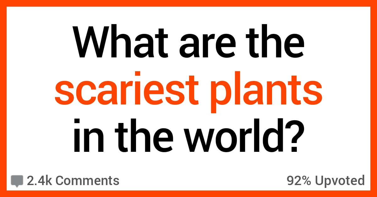 People Share What They Believe Are the Scariest Plants in the World