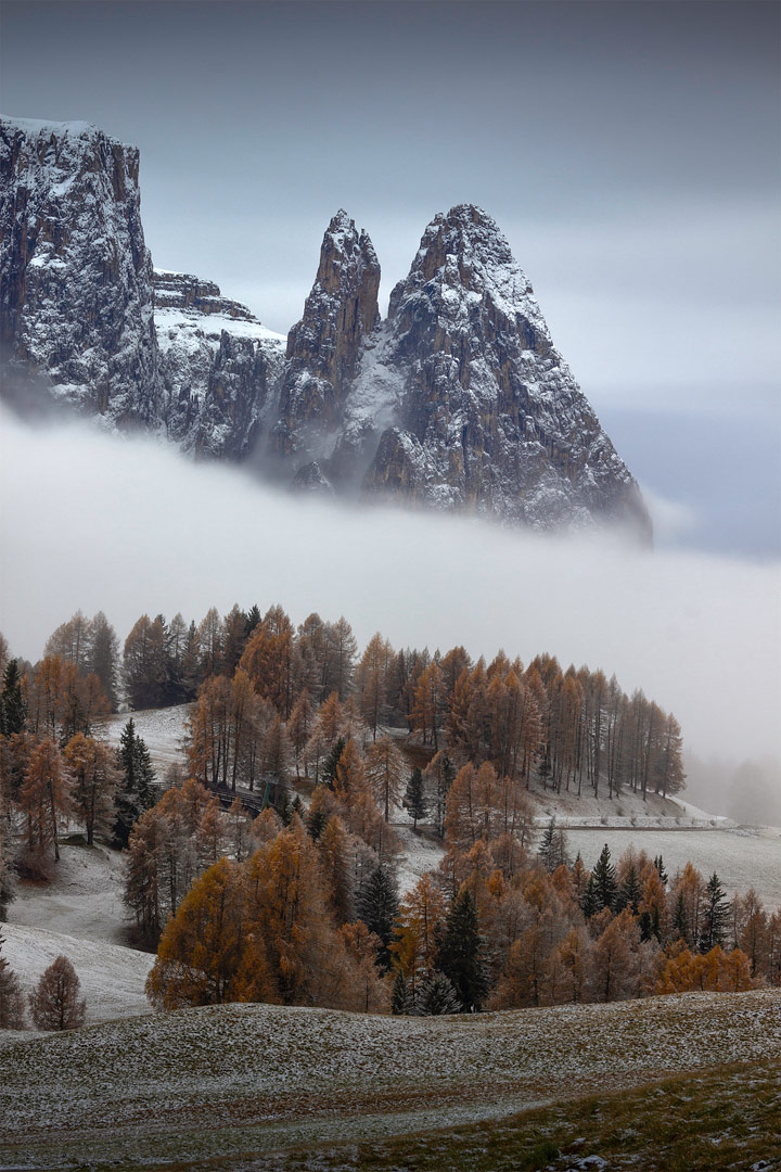 Alpe di Siusi, Dolomites, Italy by Francis Ansing
