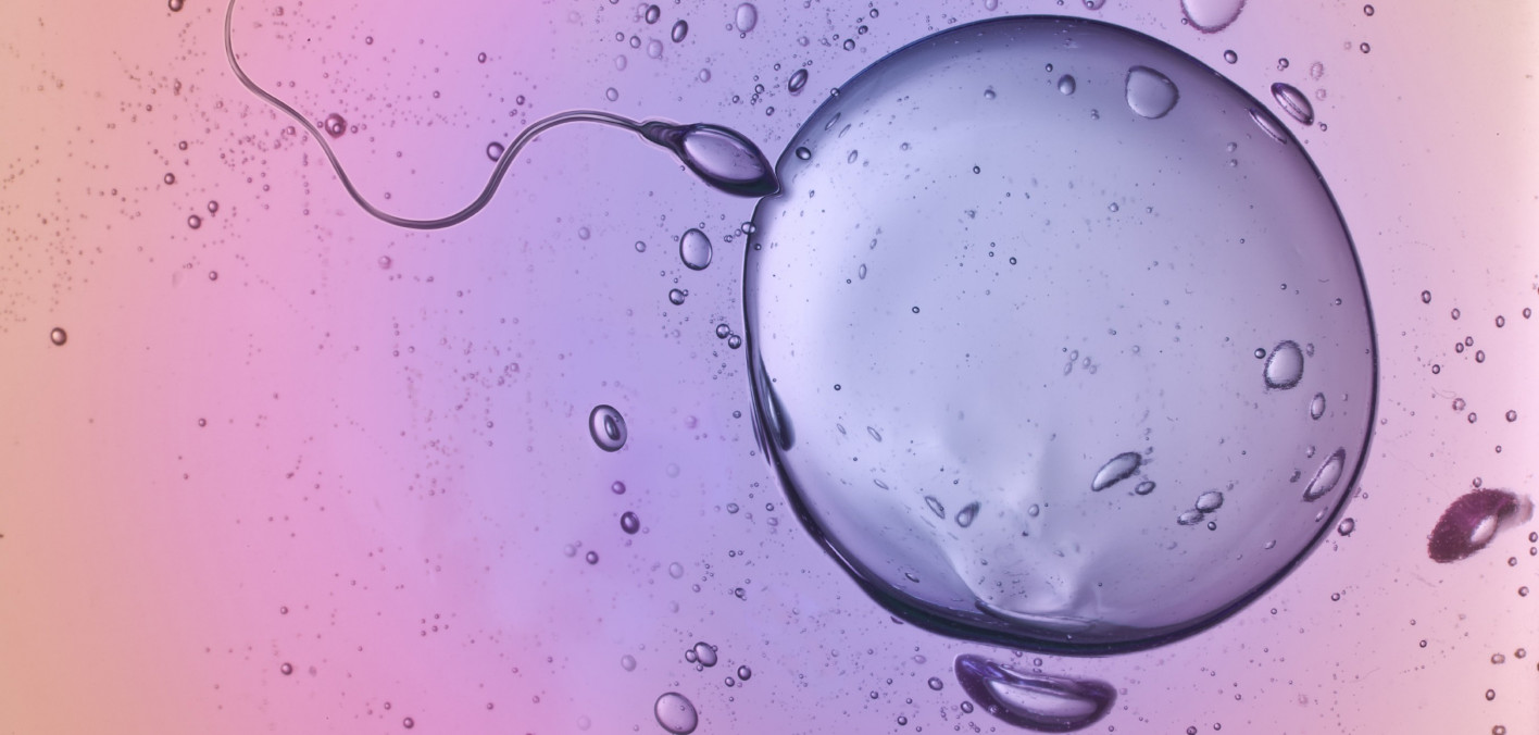 Infertility Is Not Only a Women's Issue