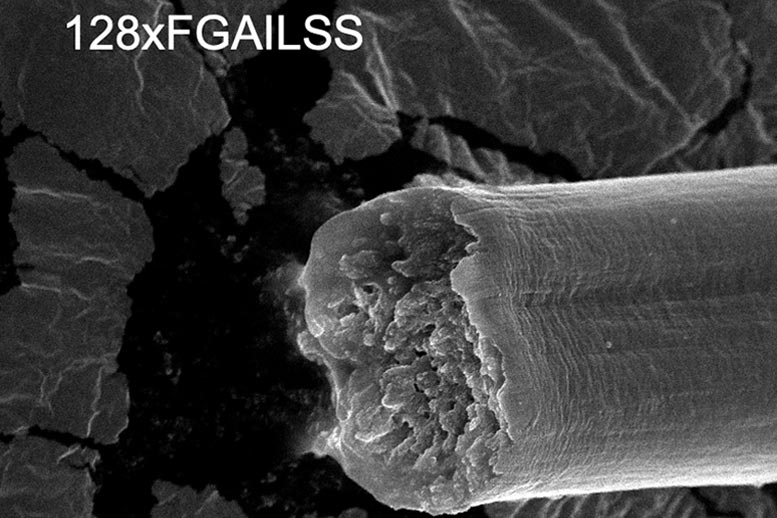 Engineered Synthetic Fiber – Stronger than Steel