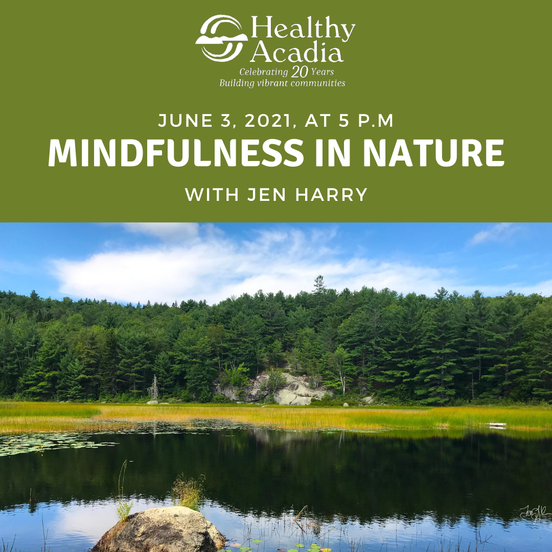Healthy Acadia invites you to explore 'Mindfulness in Nature'