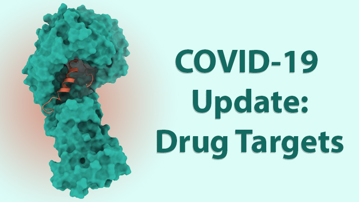 Protein Mapping Study Reveals Valuable Clues for COVID-19 Drug Development