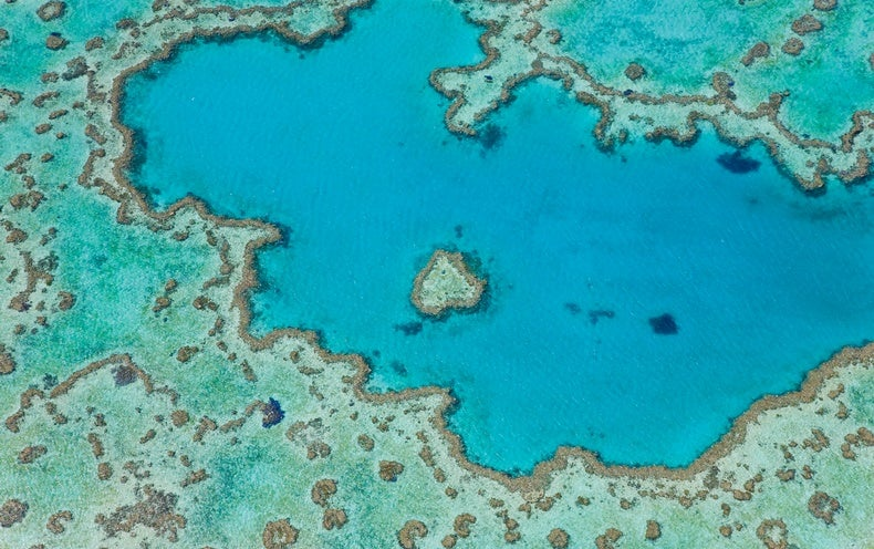 Australia's Criticisms of Proposal to List Great Barrier Reef as 'in Danger' Don't Stack Up